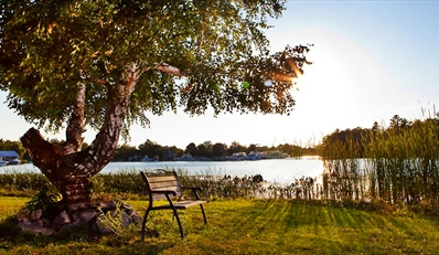$129 -- Muskoka Retreat incl. $60 in Spa & Dining, 46% Off