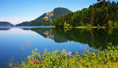 $149 -- Oregon Wine Country 2-Night Stay w/Dinner & Tastings