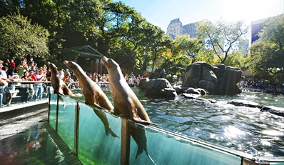 $19 -- Day at Central Park w/Zoo Visit, Biking & Ice Cream