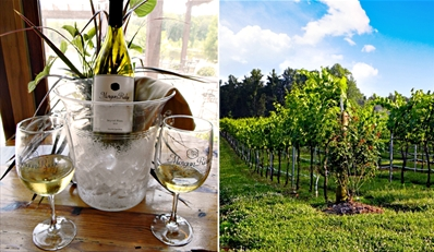 $18 -- Morgan Ridge Vineyards: Wine Tour for 2 w/13 Tastings