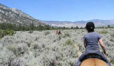$39 -- Horseback Trail Rides near Lake Tahoe, Reg. $80