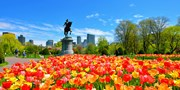 $41-$47 -- New Haven to Boston or Philly on Amtrak