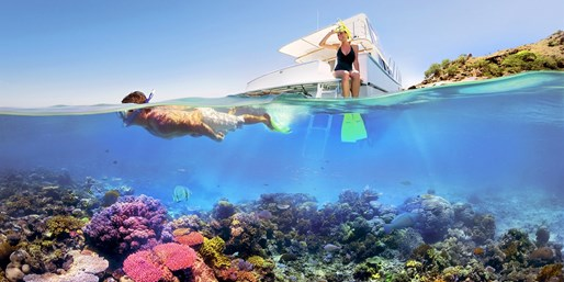$899 -- Great Barrier Reef Scuba-Diving Adventure w/Cruise
