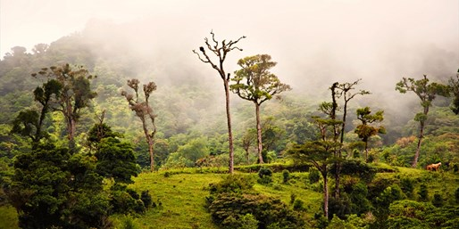 $1149 -- Costa Rica Weeklong Independent Vacation w/Air