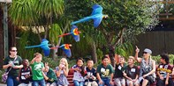 $99 -- Tampa Bay: 9-Day Pass to Top Attractions, Reg. $197