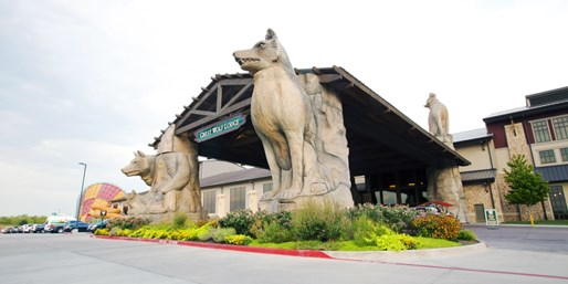 $180 -- Texas: Family Escape to Grapevine's Great Wolf Lodge