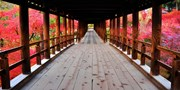 ¥37,900 -- 京都&奈良2日間 おすすめ紅葉タクシー観光付