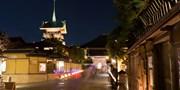 ¥9,600 -- 名古屋発 桜満開の京都日帰り 夜間特別拝観付