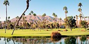 $161* & up -- Cheap Flights to Palm Springs, into Aug. (R/T)