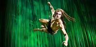ab 64 € -- Top-Tickets für Disneys Musical Tarzan, bis -27€