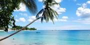 £999pp -- Barbados: Luxury Apartment Week w/BA Flights