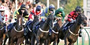 £34 -- Day at the Races for Two: 15 UK Courses, Reg £72