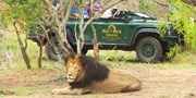 $3999 -- South Africa 5-Star Safari; 38 Cities at $2090 Off