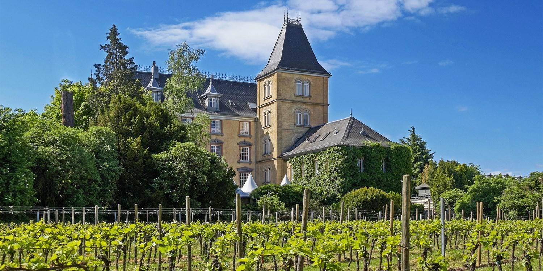 Schloss Edesheim -- Edesheim, Germany