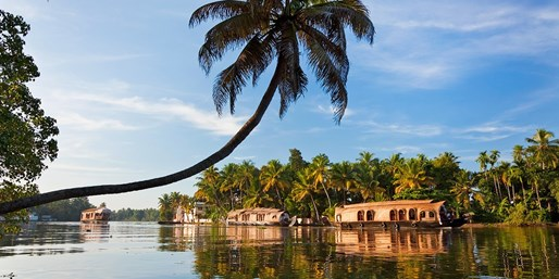 £1598pp -- India: Private Kerala Tour w/Flights & Excursions