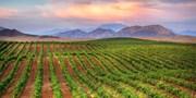 ab 699 € -- Kalifornien: San Francisco, Weingüter & Yosemite