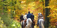 $12 & up -- New England: Pumpkin Patch & Fall Trail Ride