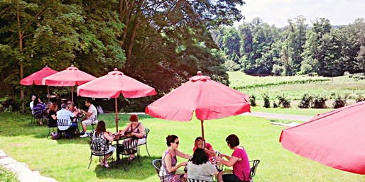 $49 -- Gourmet Winery Picnic for 2 w/Flights & Tour, 50% Off