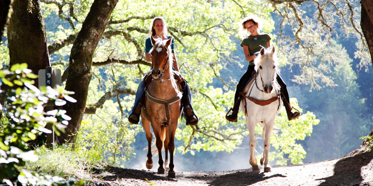 $75 -- Horseback Trail Ride w/Lesson for 2, Reg. $140