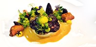 189 € -- Kochkurs bei Sternekoch mit Menü & Champagner