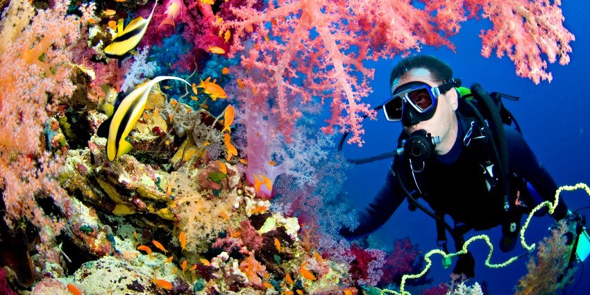 $99 -- All-Day Scuba Trip w/Reef Dives & Class, Reg. $225