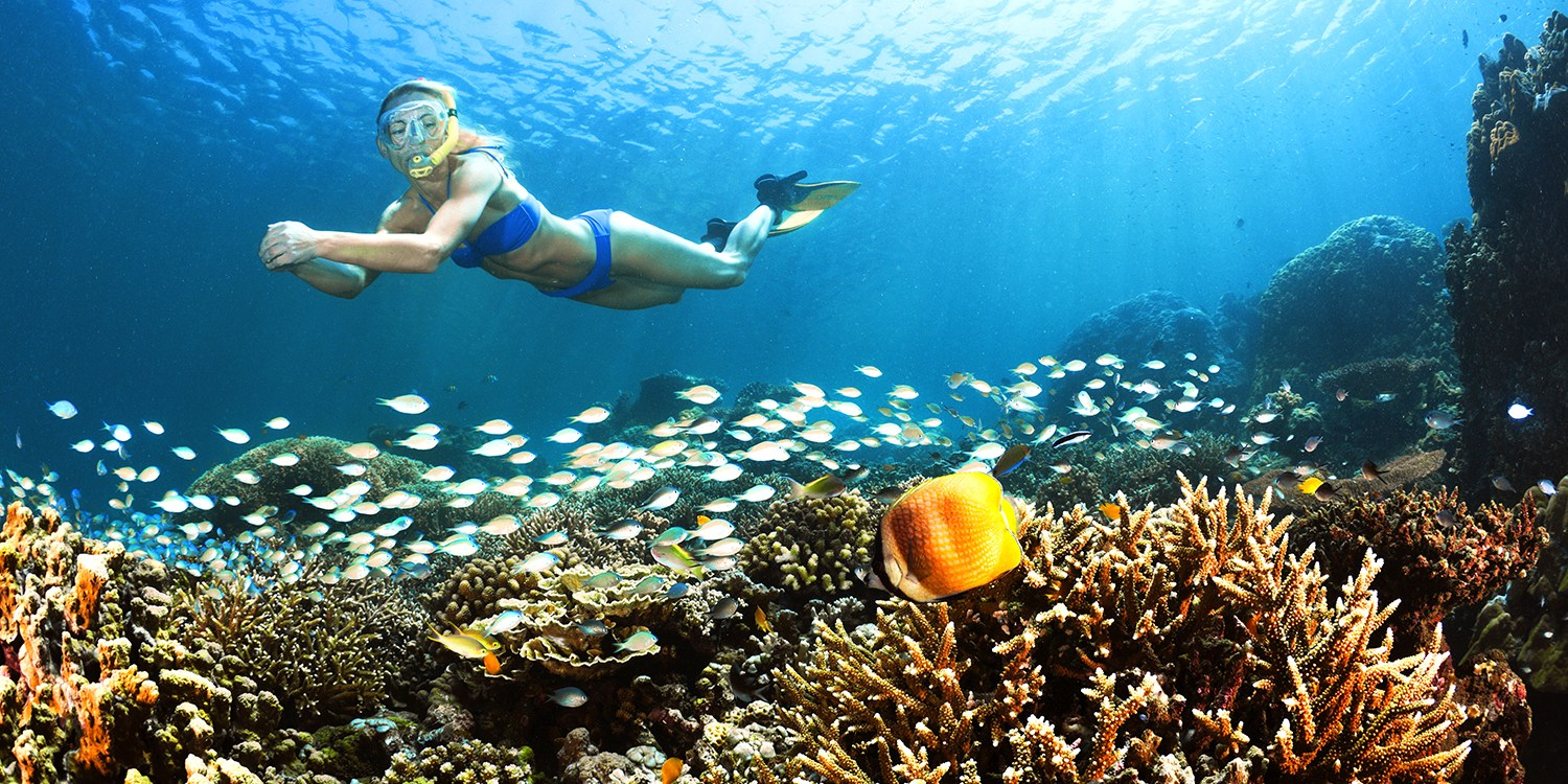 $15 -- Waikiki: 5-Day Snorkel Package Rental, Reg. $32