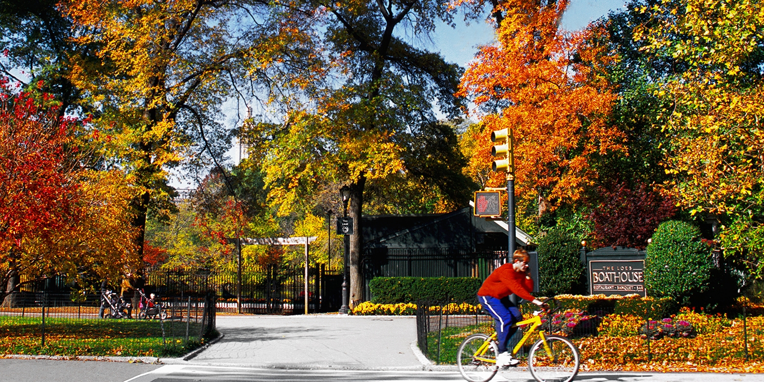50% Off Central Park Bike Tours, Valid into Fall