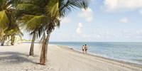 Nationwide Flights to Miami (Roundtrip)