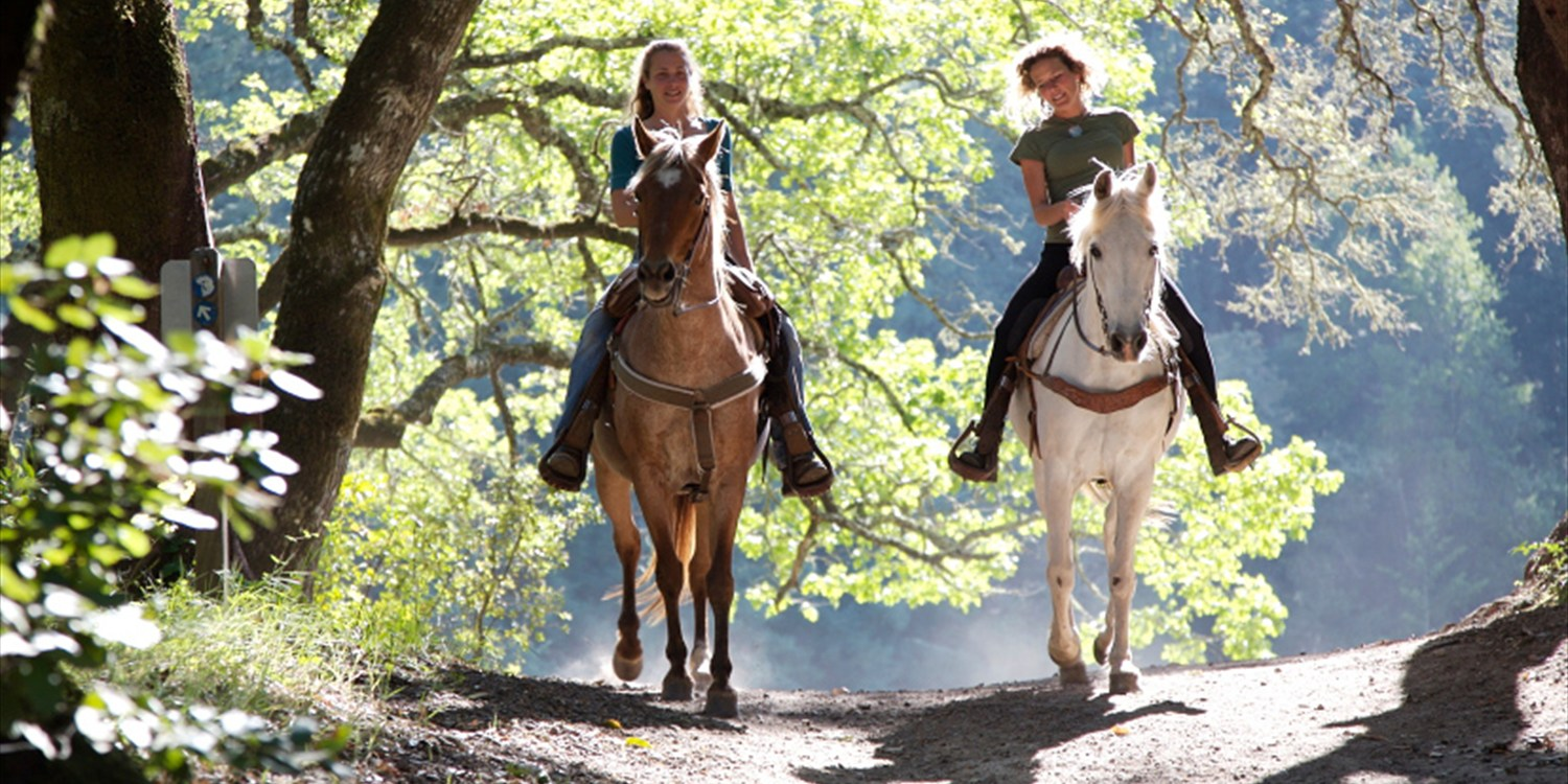 $29 -- Hudson Valley: Summer Horseback Trail Ride, Reg. $65