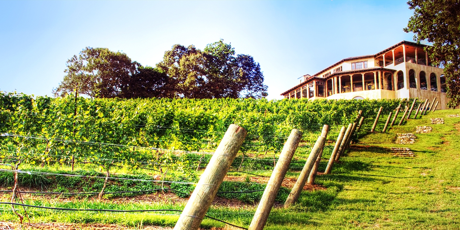 $29 -- Montaluce Winery: Guided Hike & Wine Tasting