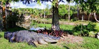 $55 -- Wildlife Park & Buggy Ride for 2 w/Lunch, Reg. $74
