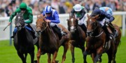 £15 & up -- Festive Racedays at Ascot w/Drink, up to 33% Off