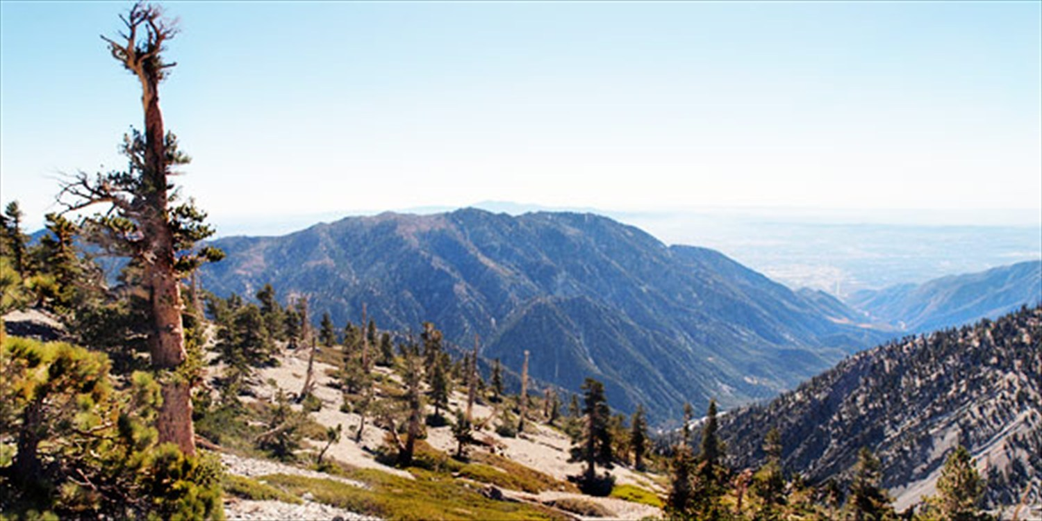 $35 -- Mt. Baldy: Lunch for 2 w/'Best' LA Views, Reg. $70