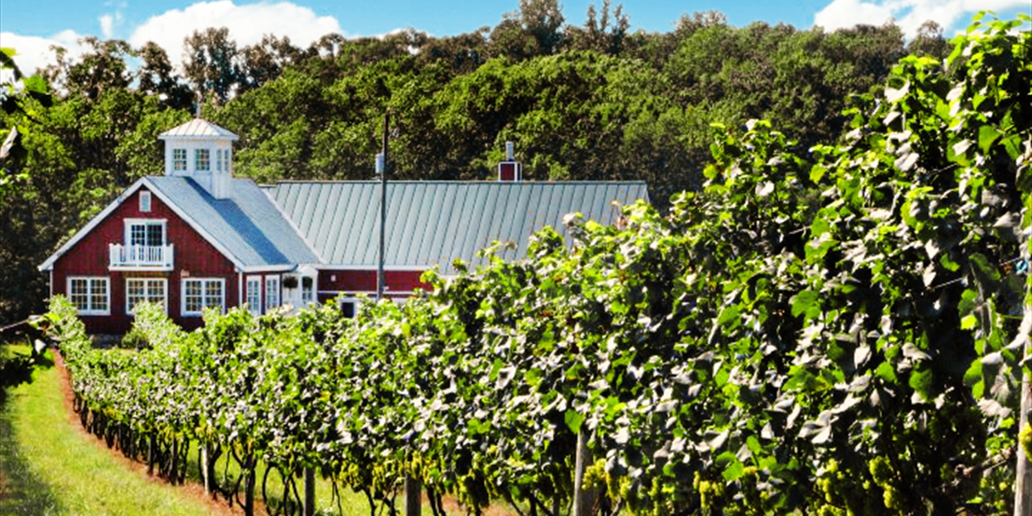 $36 -- Award-Winning Winery: Tour & Picnic for 2, Reg. $85
