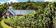 $36 -- Award-Winning Winery: Tour & Picnic for 2, Reg. $85