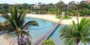 $6,599 起 -- 新加坡 4 天套票 新航早去晚返 包 1 晚聖淘沙酒店住宿連單程接載