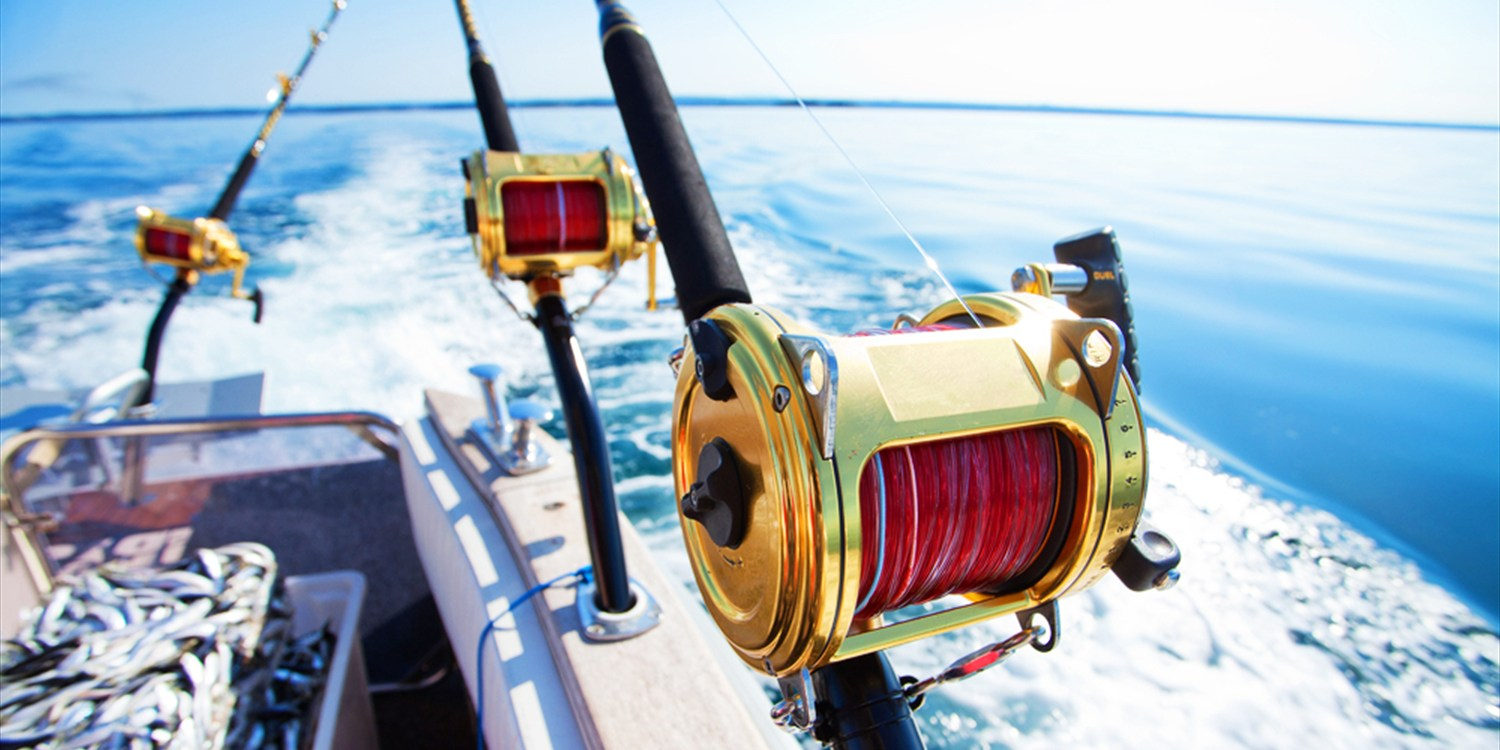 $25 -- Deep Sea Fishing off Marina del Rey, Half Off