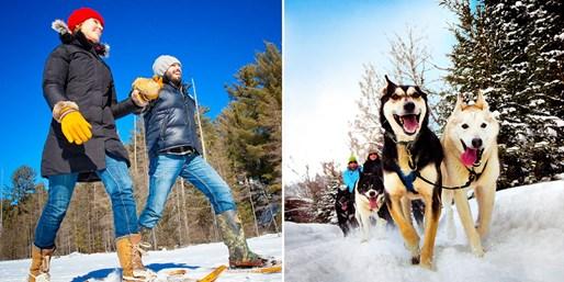 $698 -- Algonquin Park: 3-Day Winter Adventure, Reg. $998