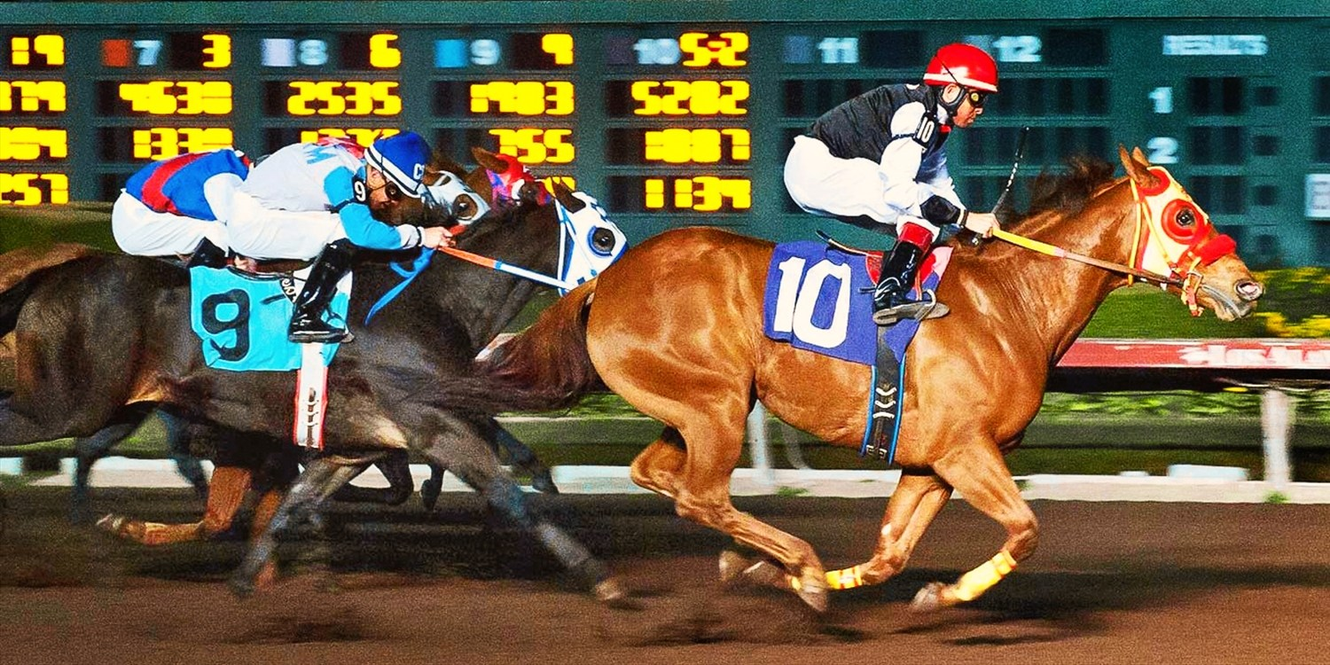$15 -- Los Alamitos: Day at the Races for 2, Reg. $34