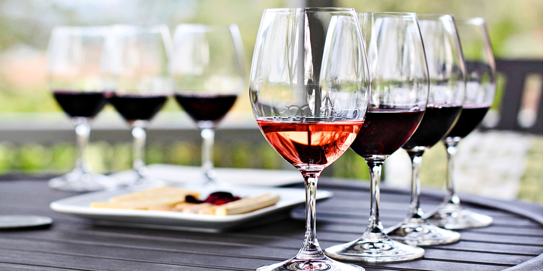 Wine Tasting among Vineyards w/Cheese & Chocolate, 40% Off