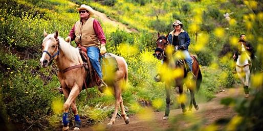 $45 -- Bandy Canyon Ranch: Trail Ride w/Safari Park Views