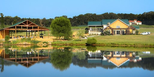 $19 & up -- Half Off Morgan Ridge Vineyards Tour & Tastings