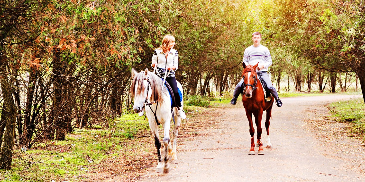 $49 -- Palmetto: Horseback Trail Ride & Dinner, Reg. $100