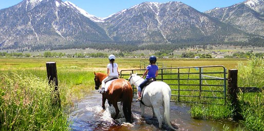 $39 -- Scenic Horseback Trail Ride for 2 near Tahoe, 50% Off