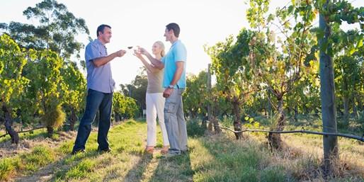$29 & up -- Wine Tasting Passes in Napa, Sonoma, Lodi & Sac