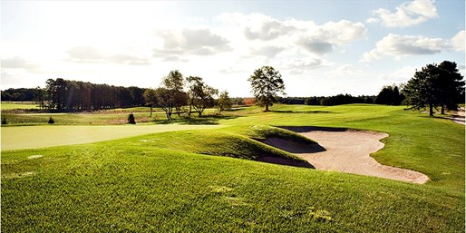 Golf at Renault Vineyard w/Cart Rental, over 50% Off