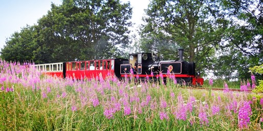 £12 -- Kirklees Light Railway: Family Ticket, Reg £24