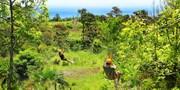 $99 -- Big Island: Zip Line & Garden Pass at Botanical World