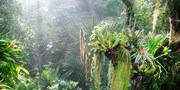 9 € -- Tropen-Erlebnis in der Biosphäre Potsdam, -38%