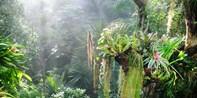 10 € -- Tropen-Erlebnis in der Biosphäre Potsdam & Bio-Limo